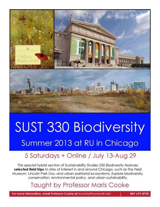 SUST 330 Sum2013 Flyer