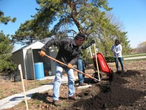 Soil Service 5
