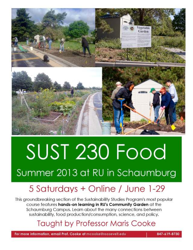 SUST 230 Sum2013 Flyer