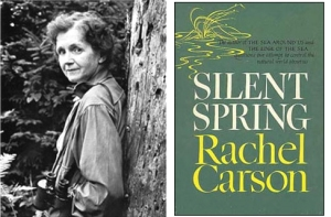 "Rachel Carson galvanized the modern environmental movement when she documented the devastating ecological impacts of chemical pesticides and herbicides in 1962's ""Silent Spring."""