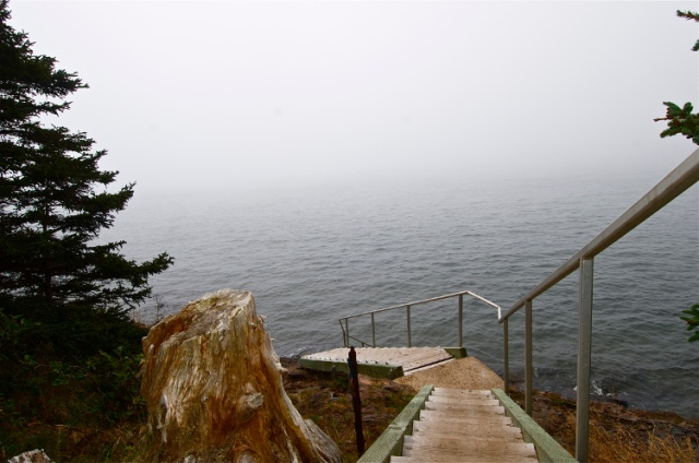 High tide on the Bay of Fundy