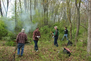 Restoration volunteers work at Deer Grove East forest preserve (source: FPDCC)