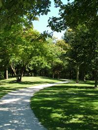 Ladd Arboretum (City of Evanston)