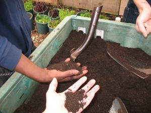 Finished compost at Growing Power's Milwaukee urban farm (M. Bryson, 2012)