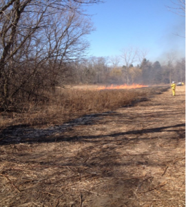 Prescribed burn at SVNC, Schaumburg IL, Apr 2015 (photo: M. Blume)