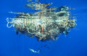 Great Pacific Garbage Patch, photo author Lindsey Hoshaw.  Flickr