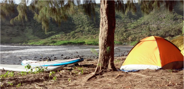 Island campsite (E. Rhea)