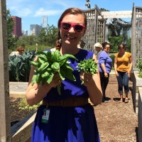 The Field Museum's Katie Baltensperger and basil from the Edible Treasures Garden. (photo: L. Miller Hill)
