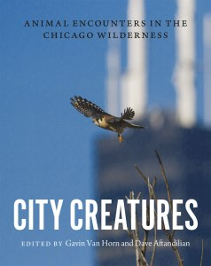 City Creatures cover