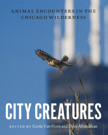 City Creatures image