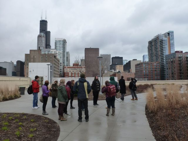 Class on Green Roof