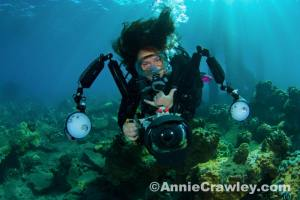SUST prof Michele Hoffman Trotter in her natural element: filming underwater!