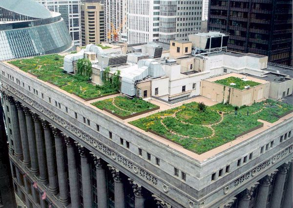 Chicago S City Buildings To Be Powered By 100 Renewable
