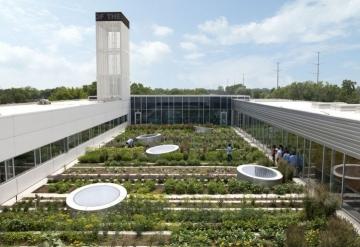 Gary Comer-Green Rooftop